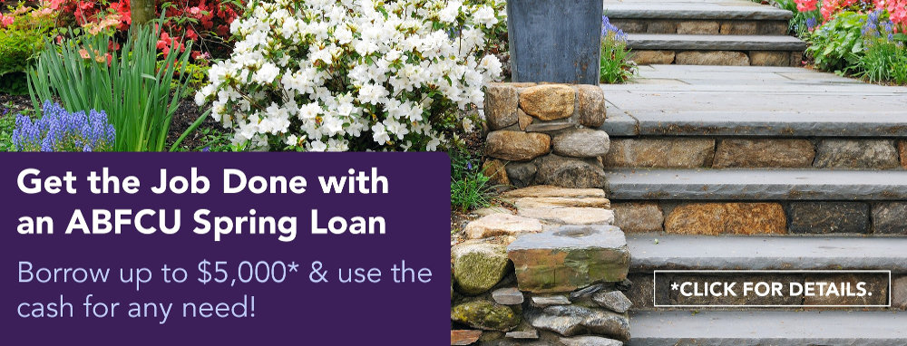 Click here for information about our spring micro loan promotion